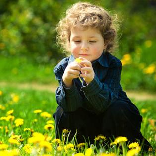 детская гомеопатия